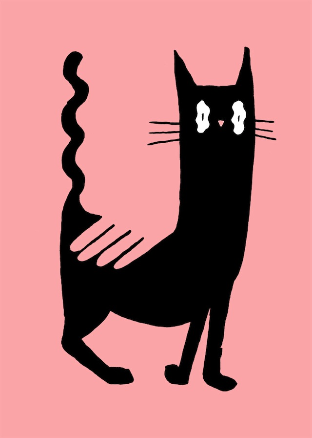 50x70-cat