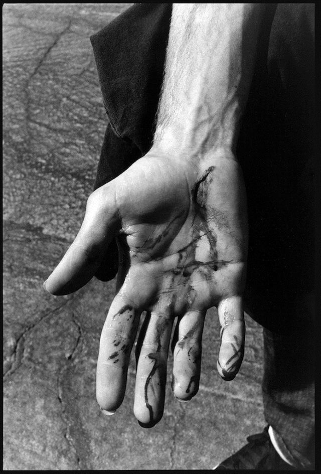 Ed-Templeton-for-Leica-06