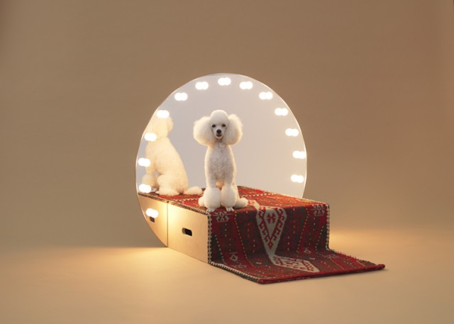dezeen_Architecture-for-Dogs_ss_2