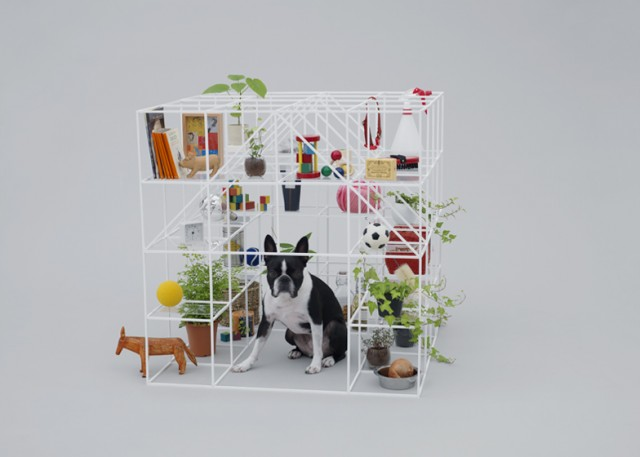 dezeen_Architecture-for-Dogs_ss_4