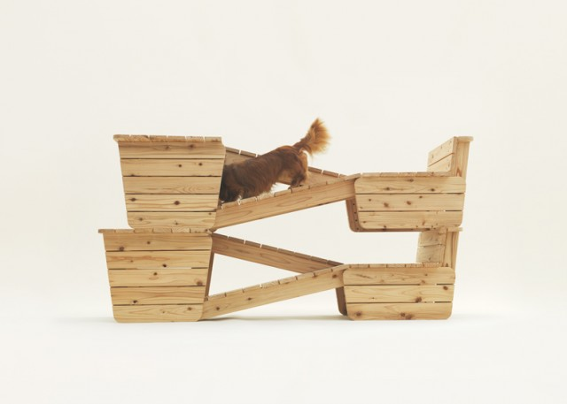 dezeen_Architecture-for-Dogs_ss_9
